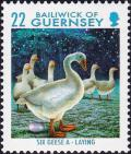 Colnect-4047-952-6-Geese-A-laying.jpg
