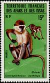 Colnect-792-355-Grivet-Cercopithecus-aethiops.jpg