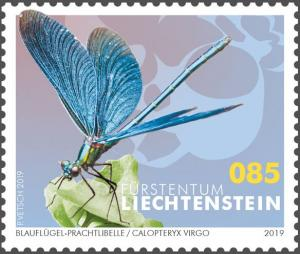 Colnect-5639-636-Beautiful-Demoiselle-Calopteryx-virgo.jpg