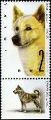 Colnect-797-028-Canaan-Dog-Canis-lupus-familiaris.jpg