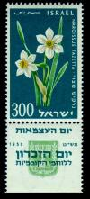 Stamp_of_Israel_-_Eleventh_Independence_Day_-_300mil.jpg
