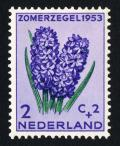 Colnect-2192-575-Common-Hyacinth-Hyacinthus-orientalis.jpg
