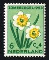 Colnect-2192-570-Wild-Daffodil-Narcissus-pseudonarcissus.jpg