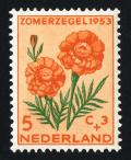 Colnect-2192-573-Mexican-Marigold-Tagetes-erecta.jpg