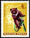 Colnect-5542-915-Circus---Bear-on-bicycle.jpg